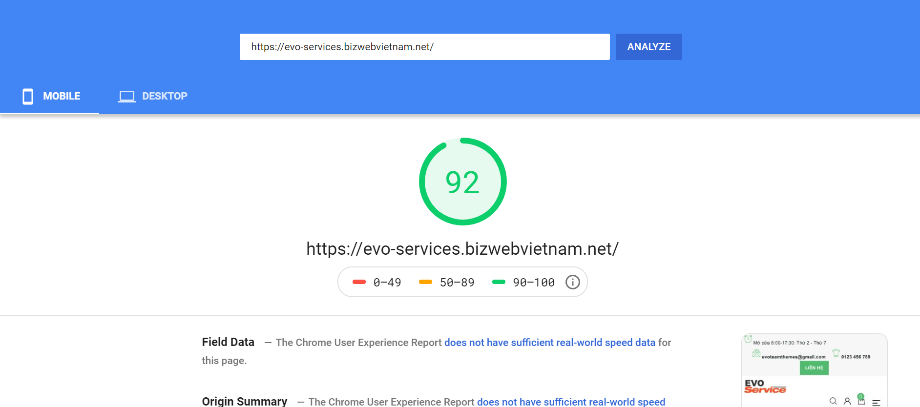 Evo Services Mobile Page Speed Insight