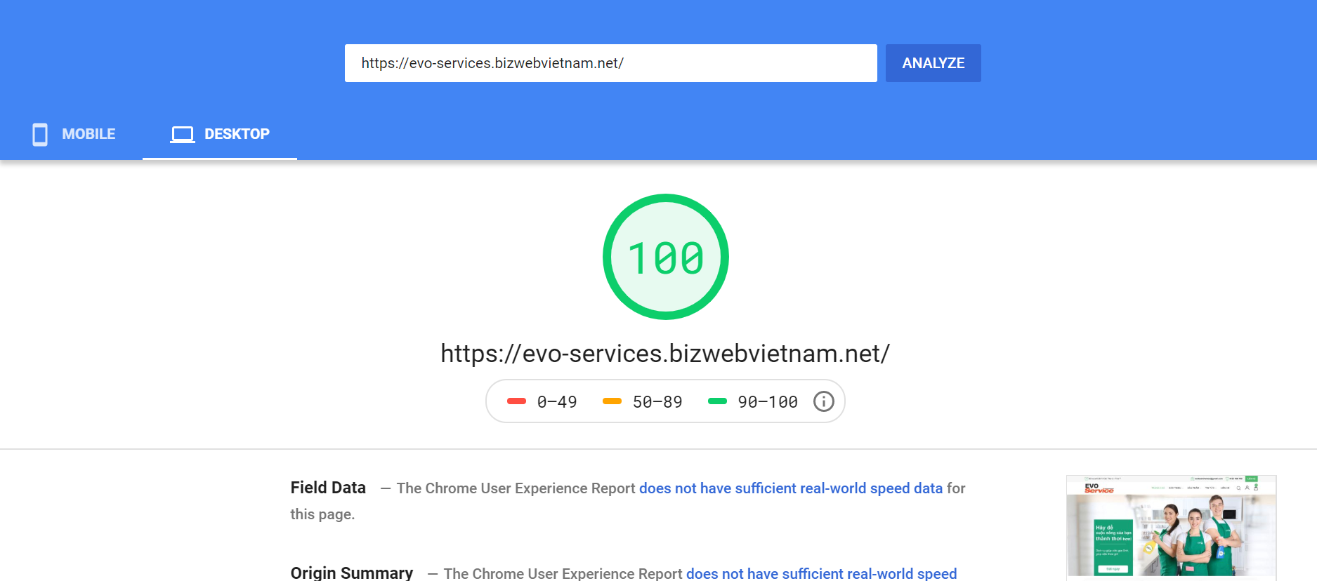 Evo Services Google Speed Insight