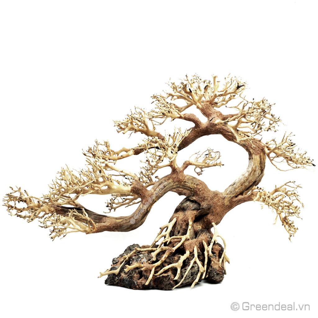 Bonsai Driftwood GH-BSR/06