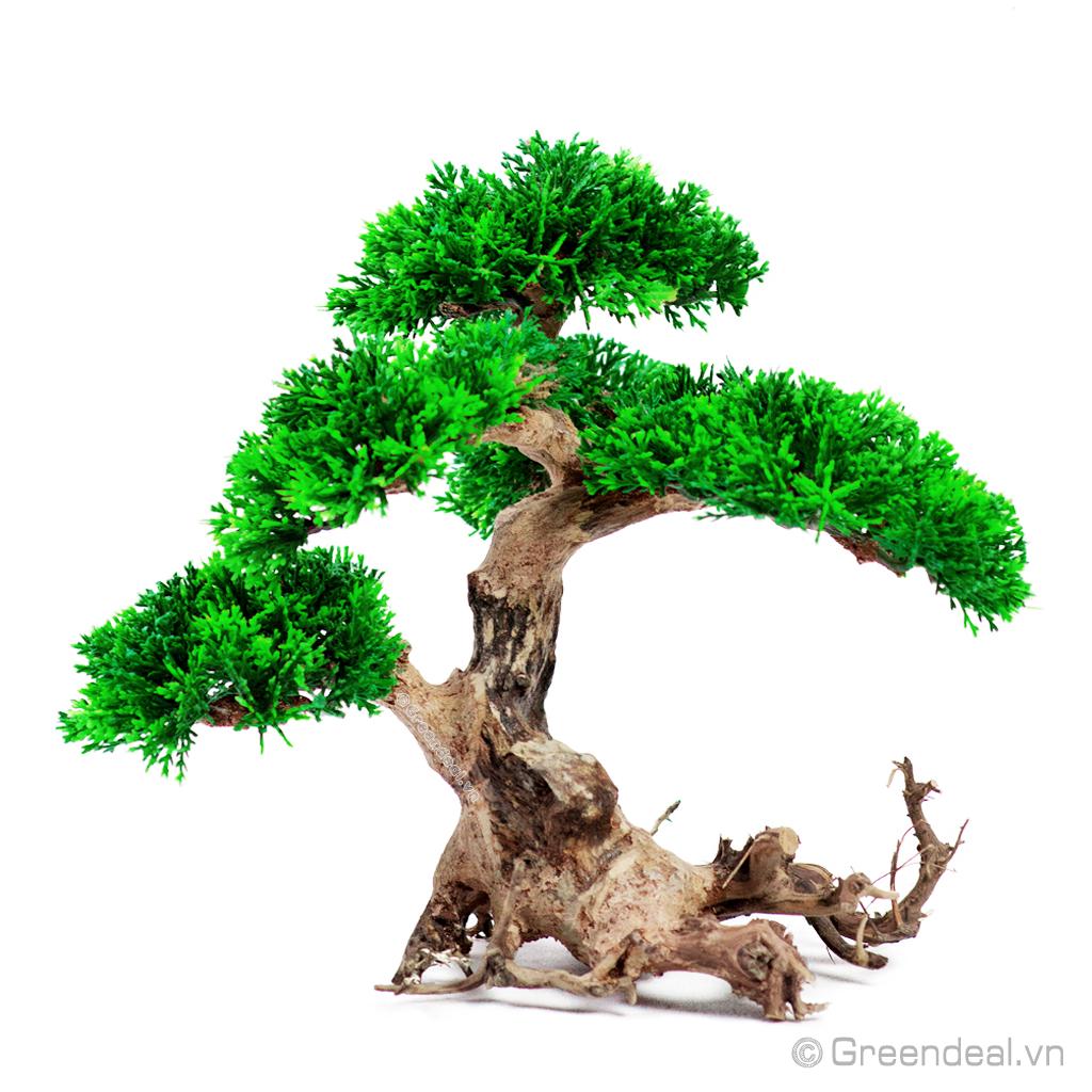 Bonsai Driftwood GH-PLASTIC/07