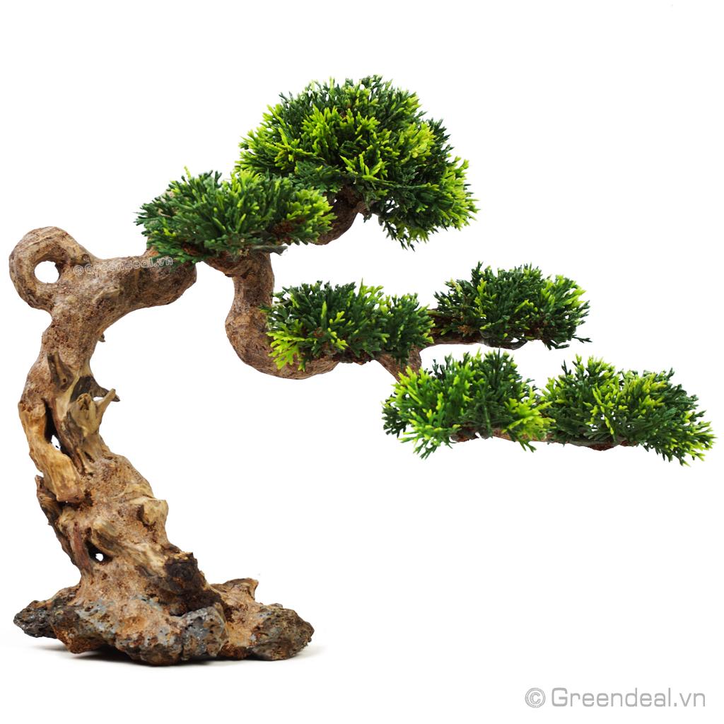 Bonsai Driftwood GH-PLASTIC/22