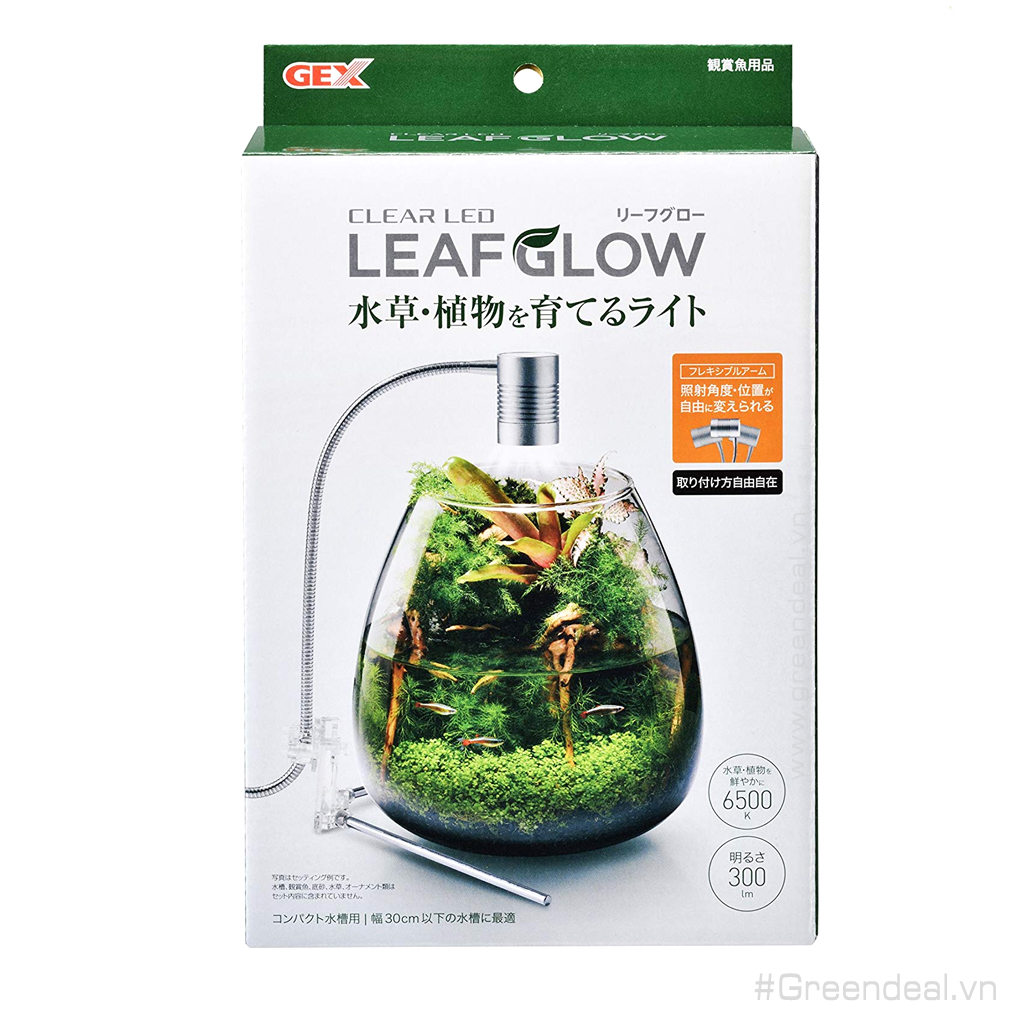 GEX - Clear LED Leaf Glow