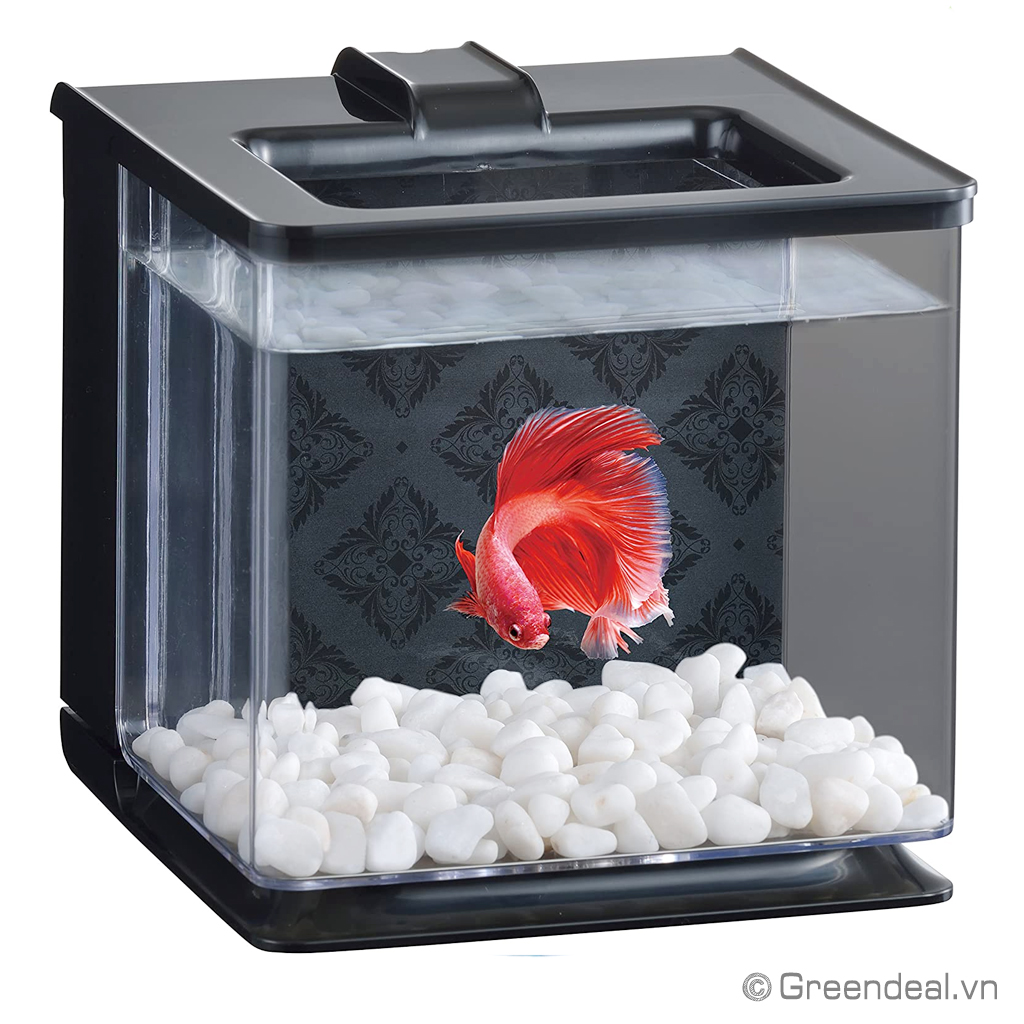 GEX - Easy Aqua Tank