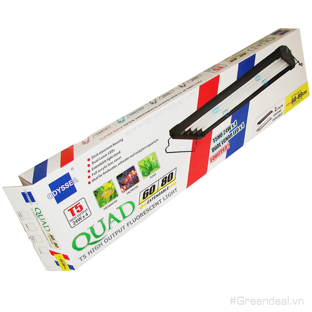 ODYSSEA - Quad Pro T5HO (60/80 cm)