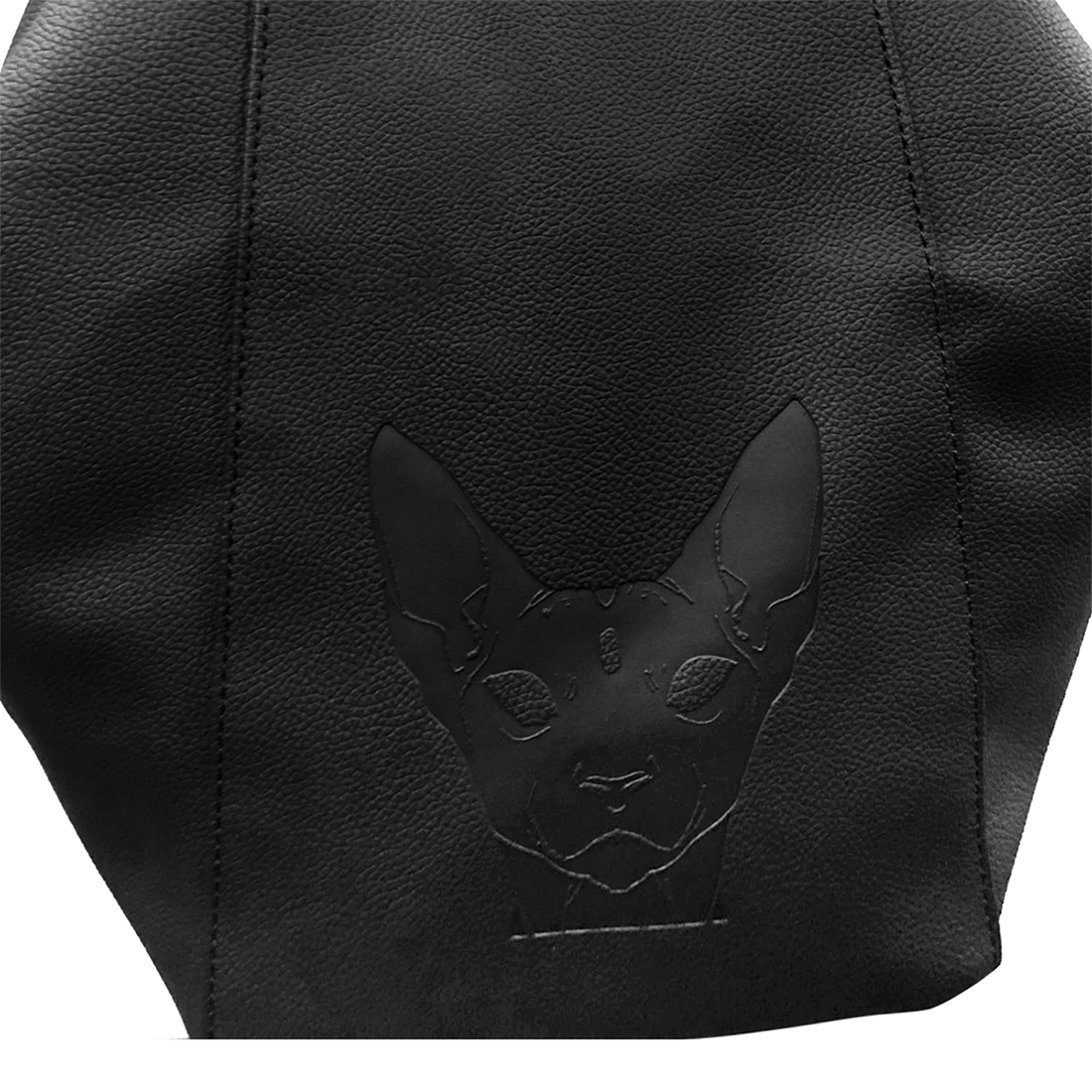 The Sphynx Pyramid BackPack