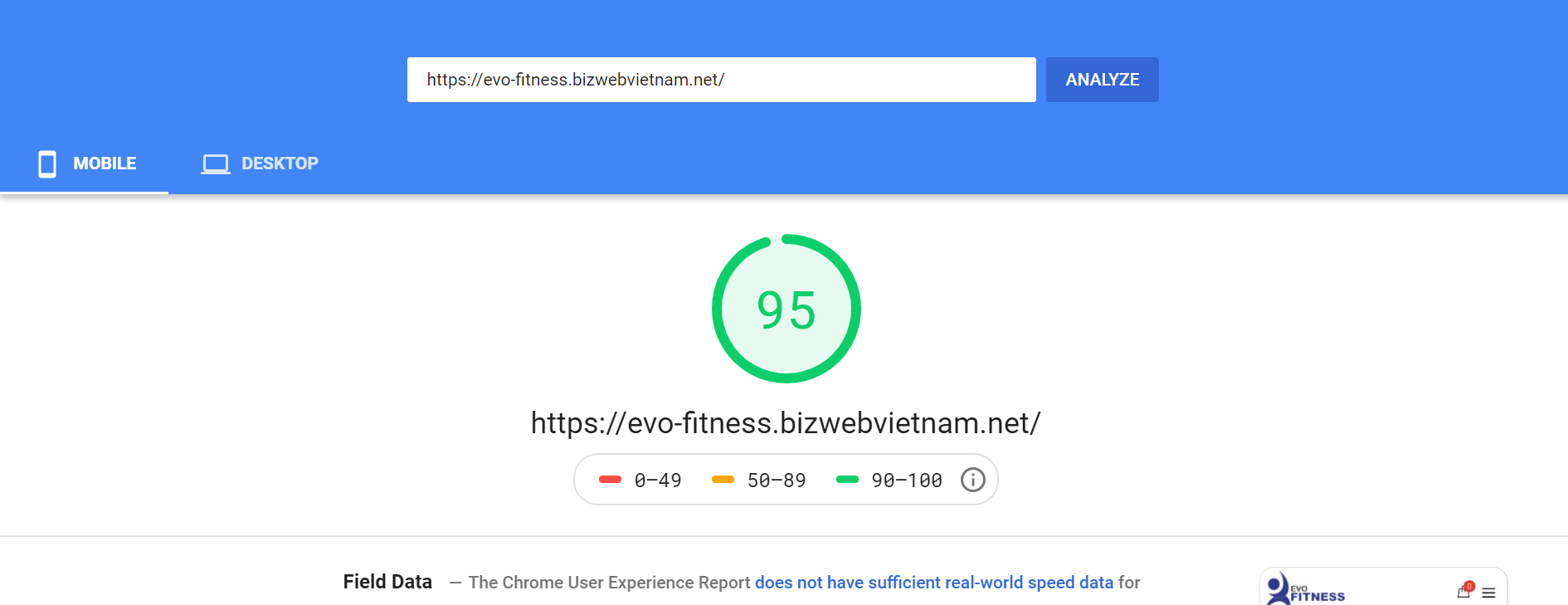 Evo Trang Sức Mobile Page Speed Insight
