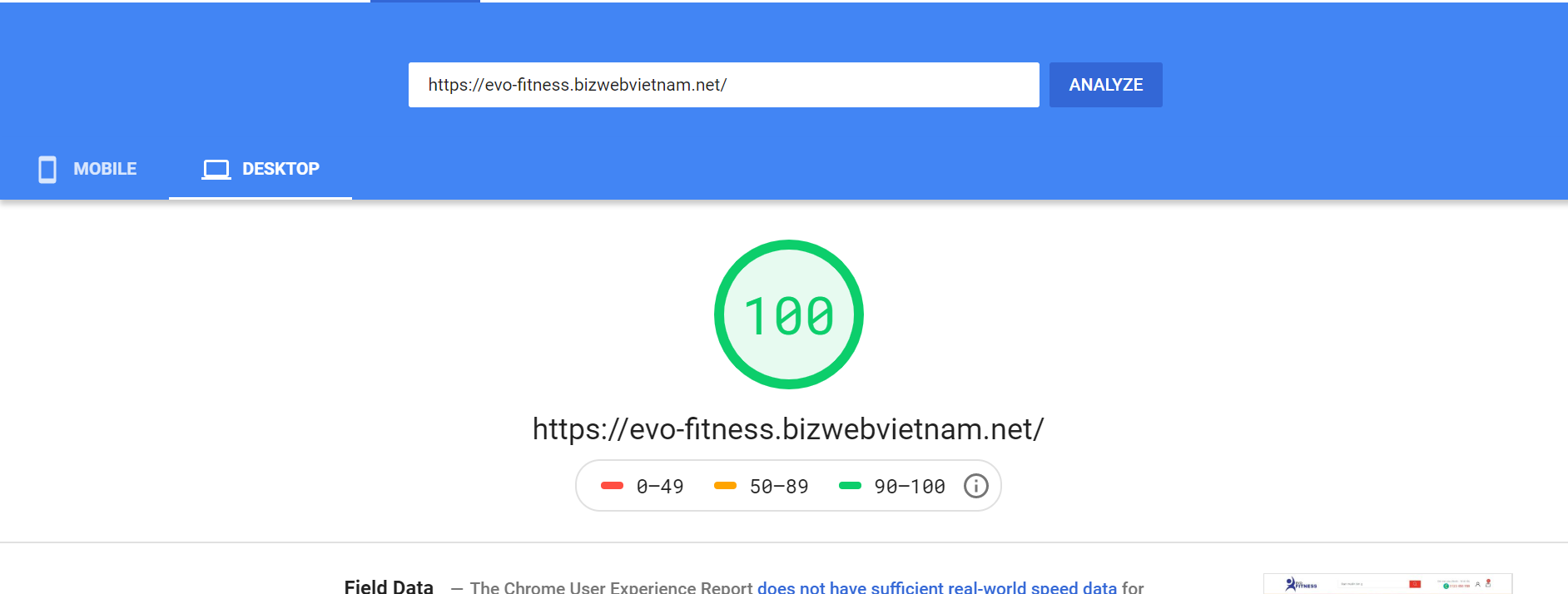 Evo Trang Sức Google Speed Insight