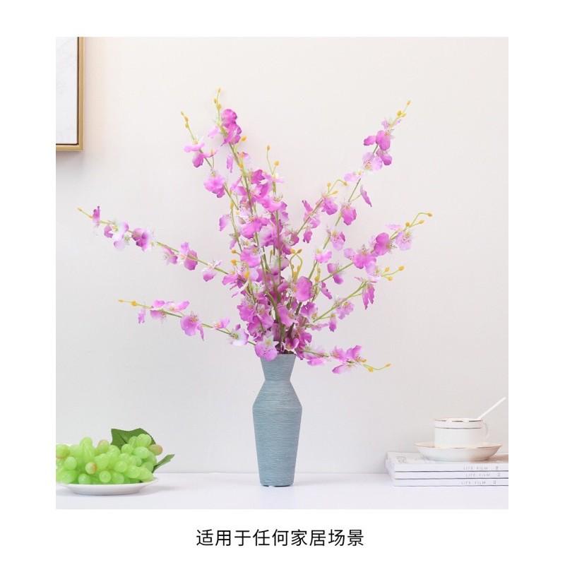 hoa_lan_vu_nu_02