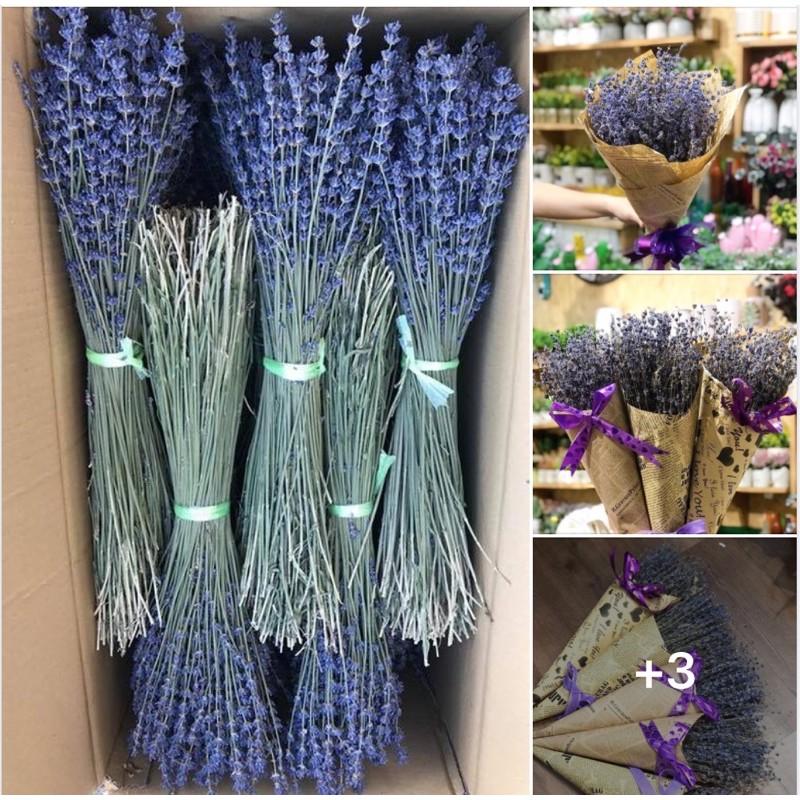hoa_lavender_bo_100g_02