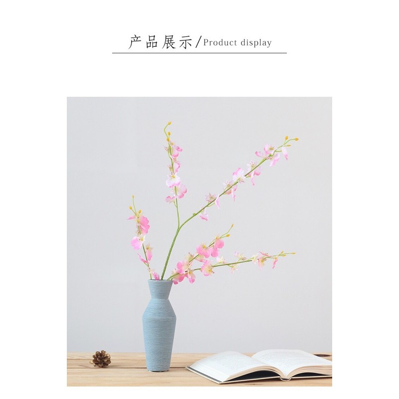 hoa_lan_vu_nu_03