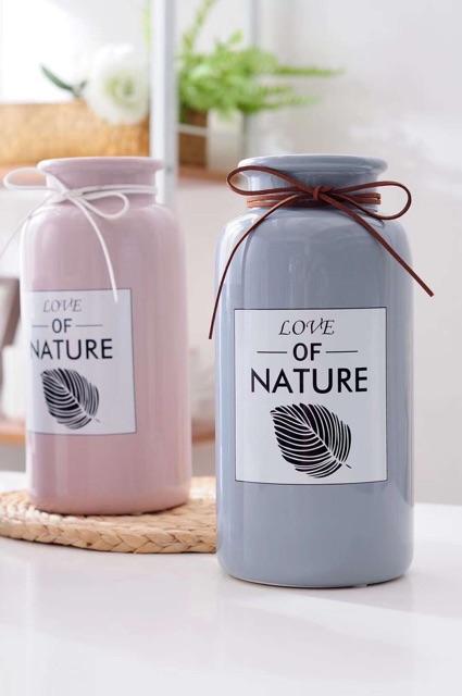 binh_su_love_of_nature_12