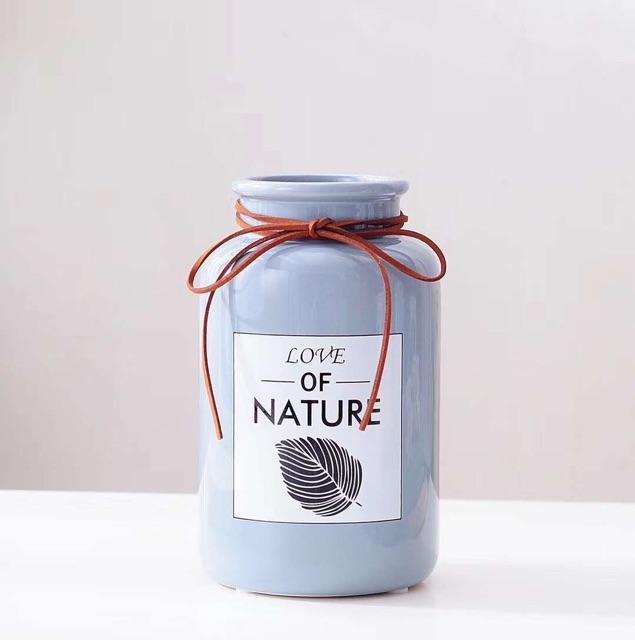 binh_su_love_of_nature_11