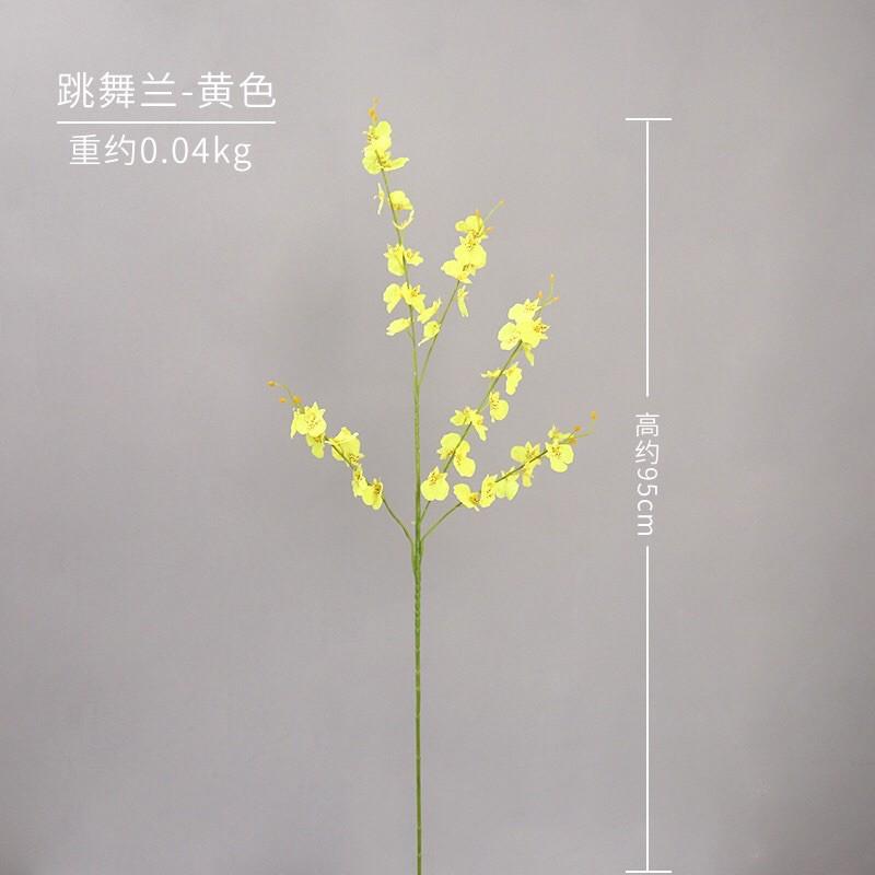 hoa_lan_vu_nu_05