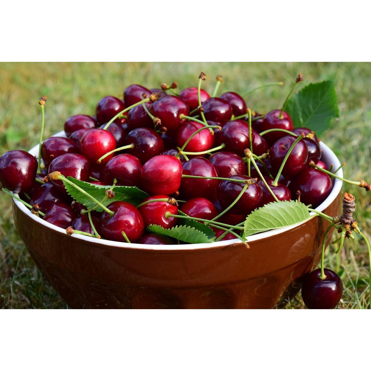 Quả Cherry Mỹ