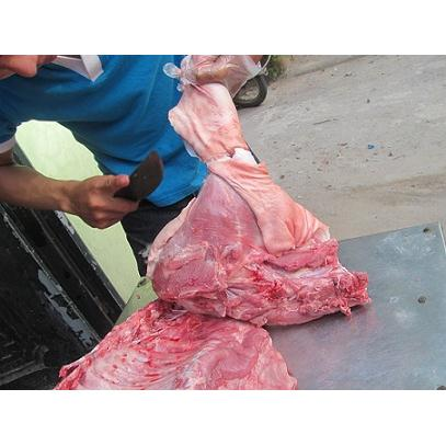 Chân Giò Nguyên Chiếc Lợn Mường ( Lợn Bản )