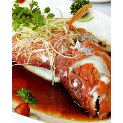 Cá Mú đỏ hấp xì dầu ngon đúng điệu