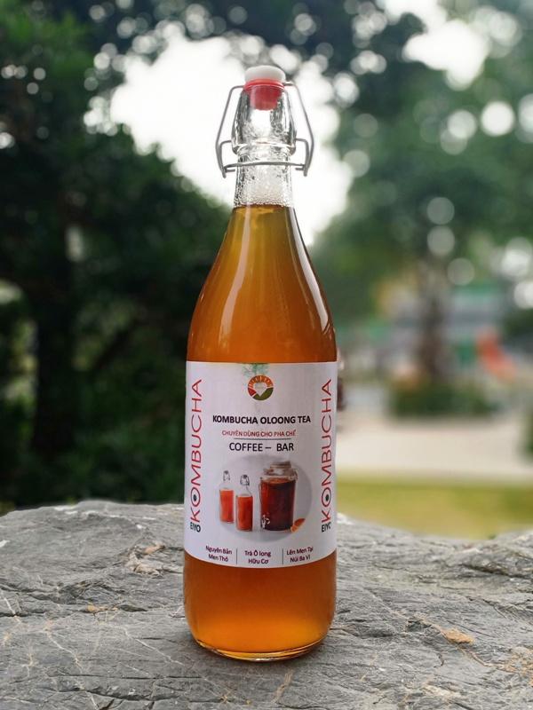 Trà KOMBUCHA OLOONG TEA - Nguyên Chất Thô (chuyên dùng cho pha chế tại Nhà & Quán cà phê, quán bar, trà chanh, trà sữa)