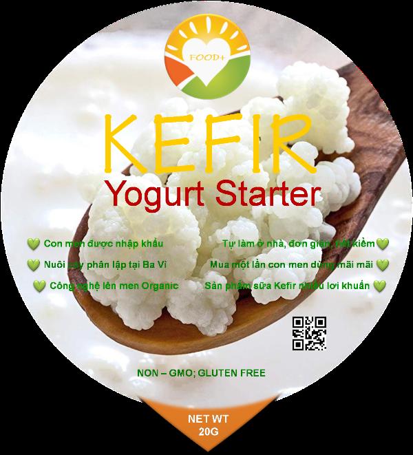 KEFIR YOGURT STARTER - ORGANIC ( Hạt Sữa Chua Kefir khởi động)