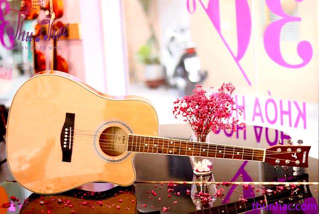 (Mua guitar Yamaha tại Thu Nhạc TP.HCM)