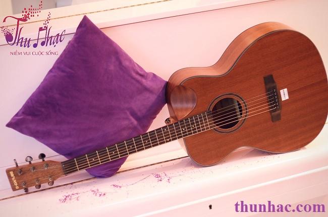 (Guitar acoustic G-Danube TP.HCM)