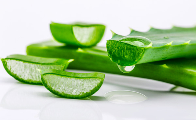 Aloe Barbadensis Leaf Juice