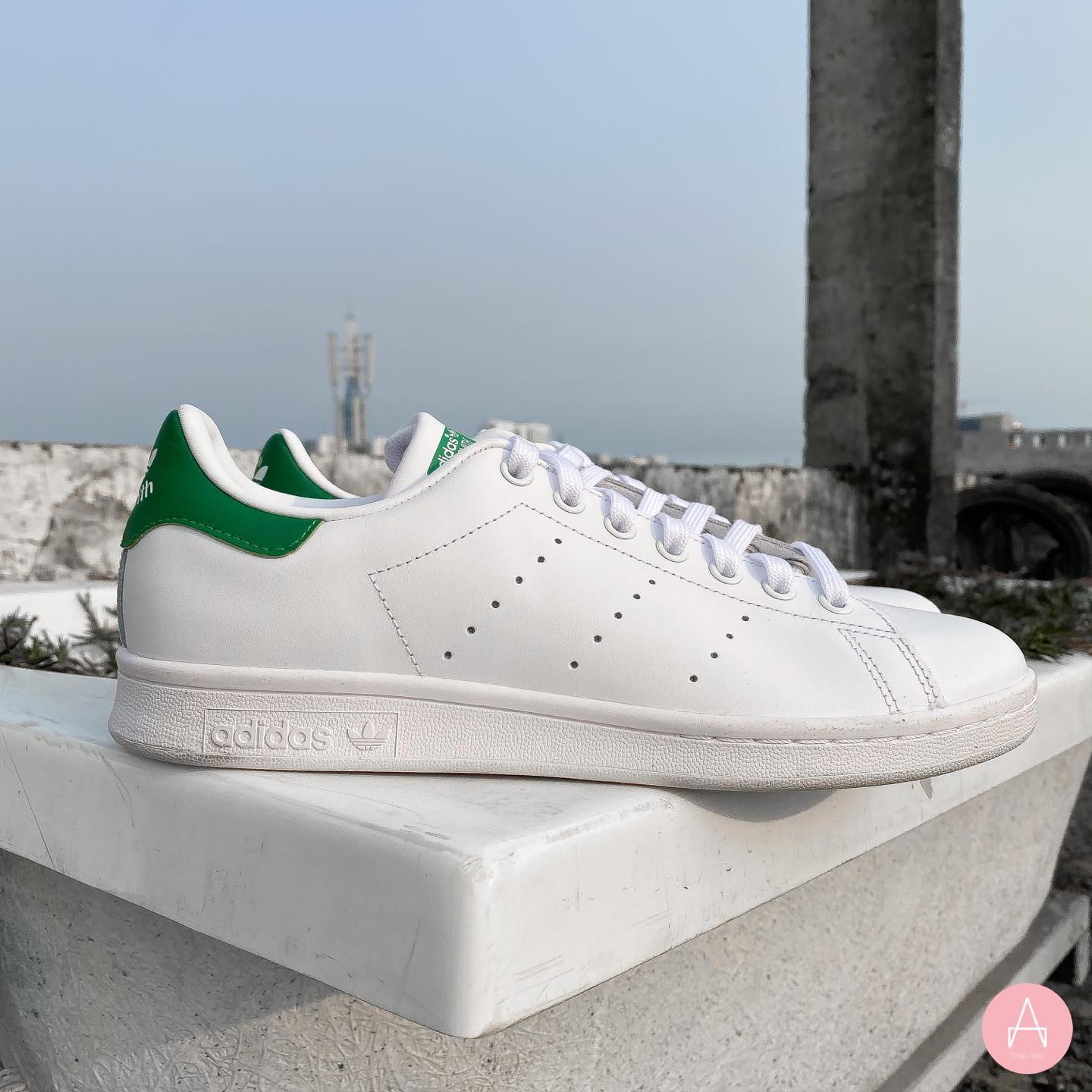 [M20324] M ADIDAS STAN SMITH GREEN