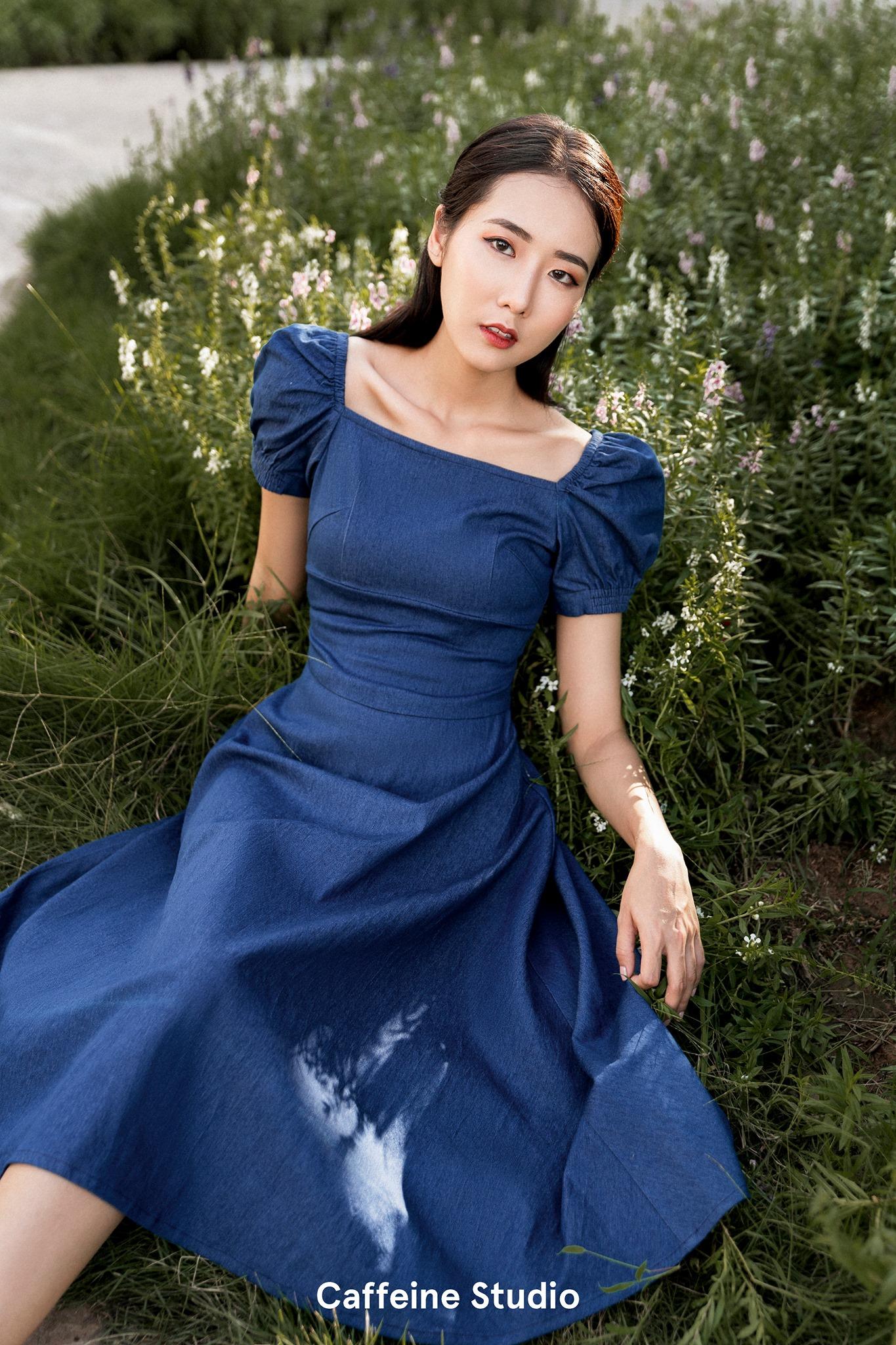 Lily denim dress