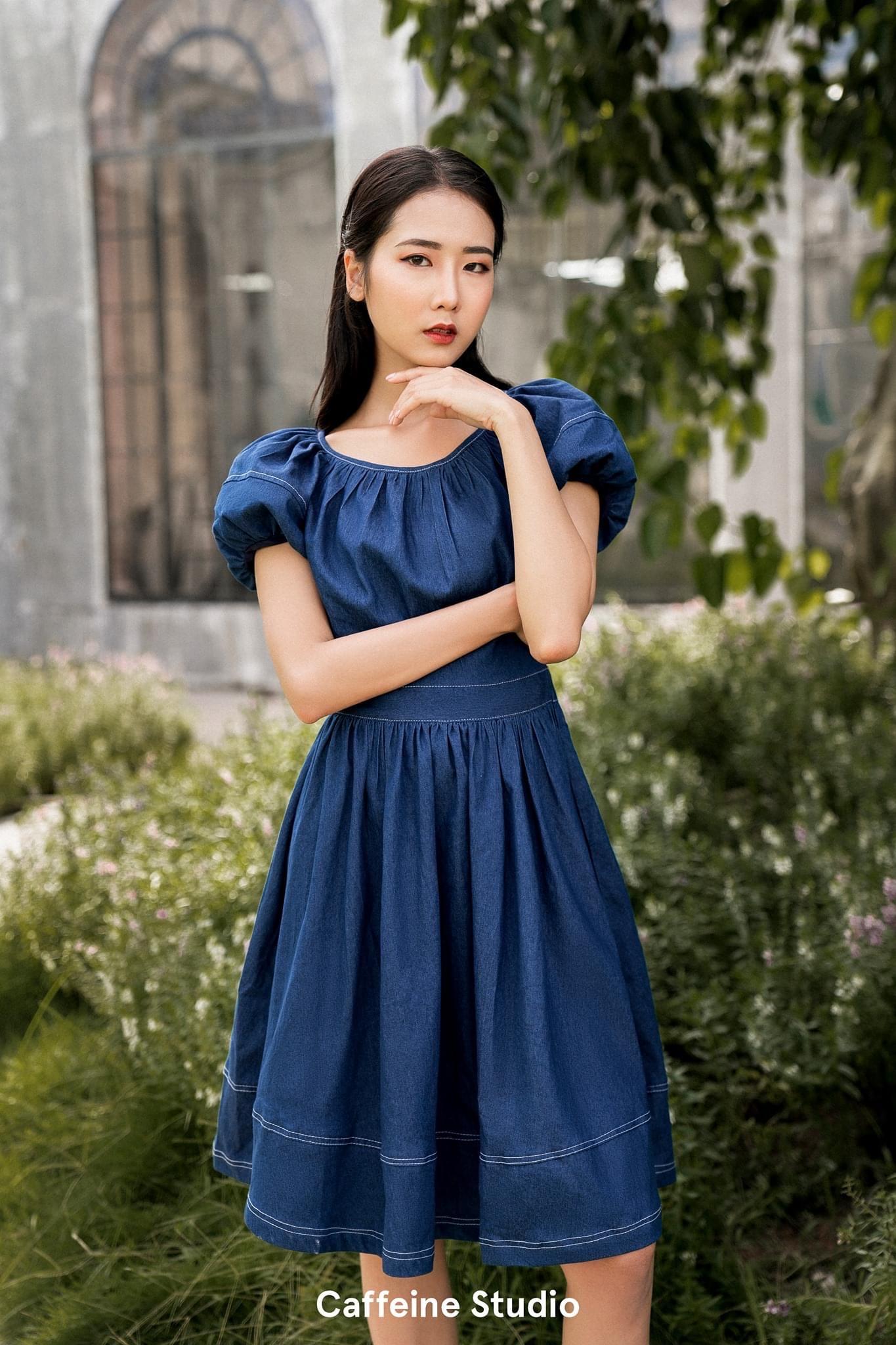 Julia denim dress