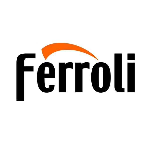 Công ty TNHH Ferroli Asean