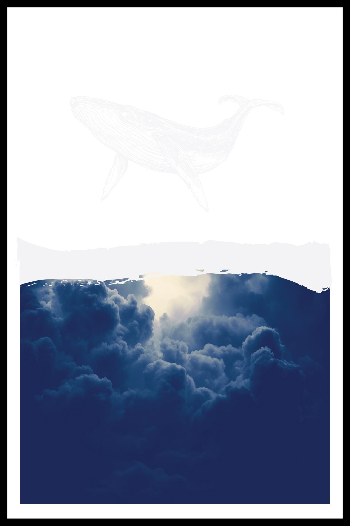 MF-CD-BLUE-S006
