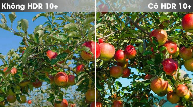 So sánh công nghệ HDR10+ và không HDR10+ - Smart Tivi Samsung 4K 55 inch UA55TU8100