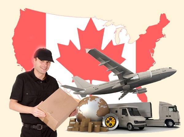 Liệt kê các mặt hàng được gửi và không sang Canada