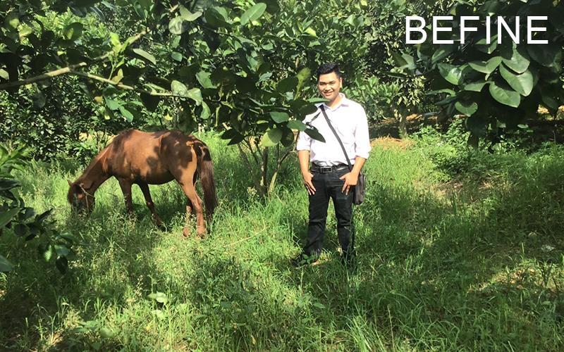 Vườn nguyên liệu bưởi Befine