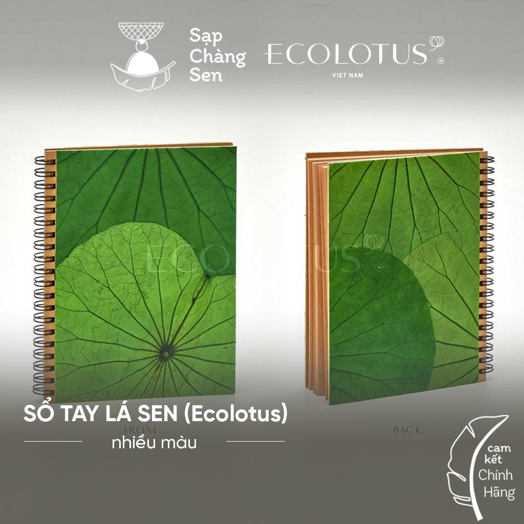so-tay-la-sen-ecolotus-nhieu-mau-sap-chang-sen