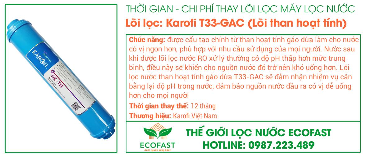 Lõi lọc nước số 5: T33-GAC (Lõi than hoạt tính)