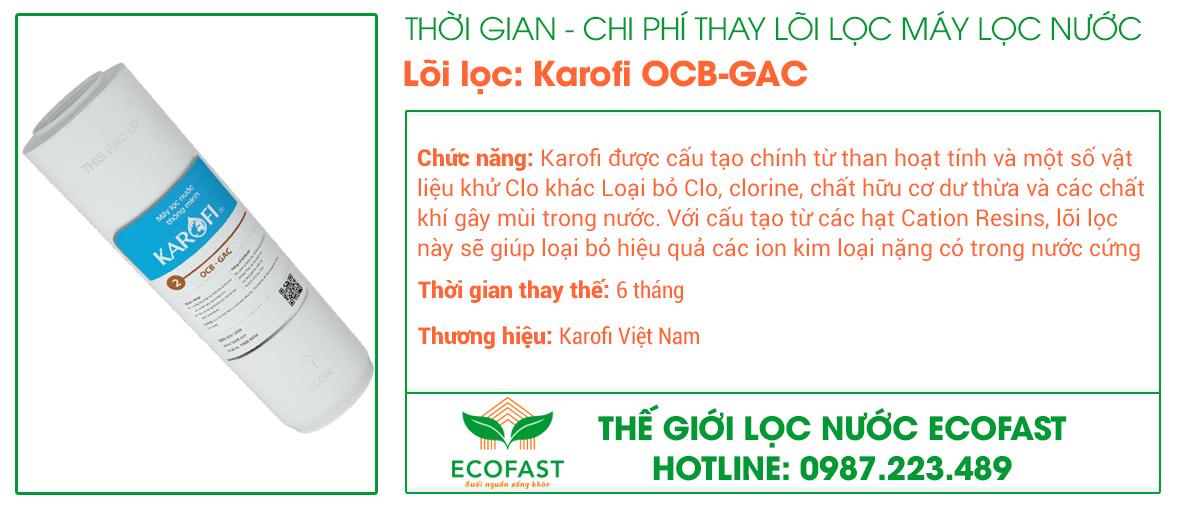 Lõi lọc thô số 2: OCB-GAC