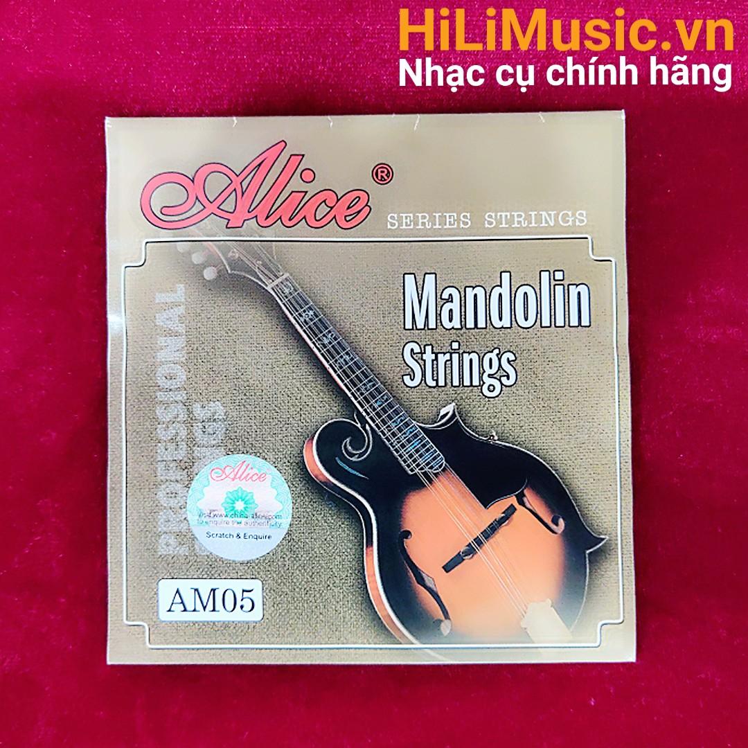 Dây đàn Mandolin AM05