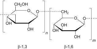Biolex chứa beta glucan giúp tăng miễn dịch vật nuôi