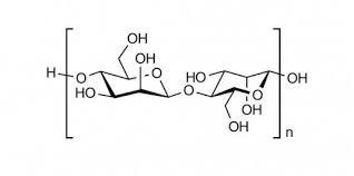 Mannan oligosaccharide (MOS) giúp kết dính, hấp phụ độc tố vi khuẩn