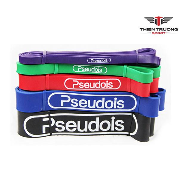 Bộ dây bản thun tập thể lực Pseudois 5 màu