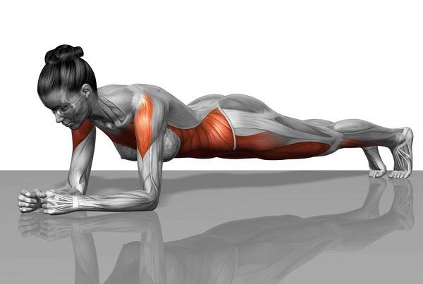 Tập abs là gì? Top các bài tập abs nhanh lộ cơ bụng 6 múi