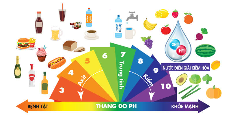 Thang đo tính kiềm và tính axit có trong các thực phẩm sử dụng mỗi ngày.