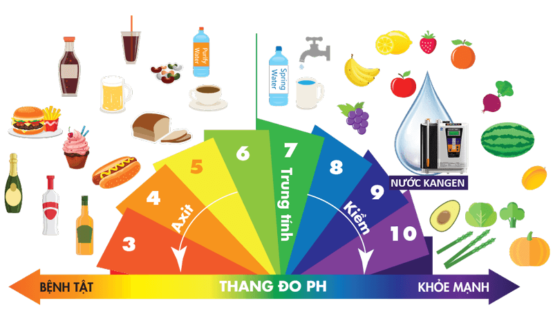 Nước Kangen giàu tính kiềm tự nhiên như rau, củ, quả,... rất tốt cho sức khoẻ của bạn.