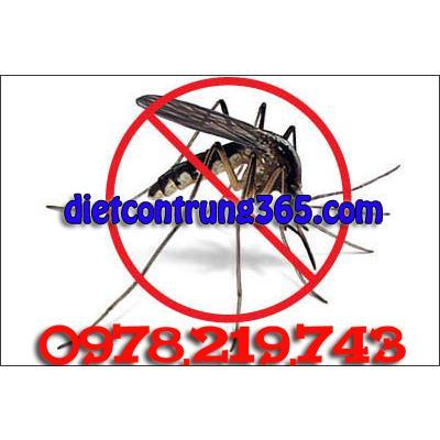 phun muỗi đúng cách