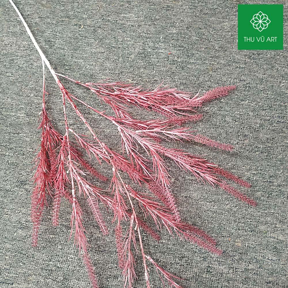 Cỏ tiên nữ thái 5 nhánh