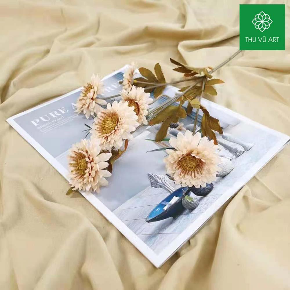Cúc hàn 6 bông