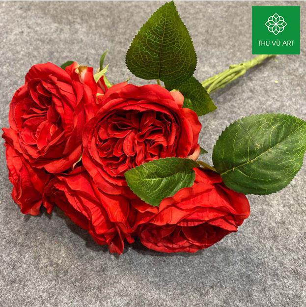 Cụm hồng david 6 bông