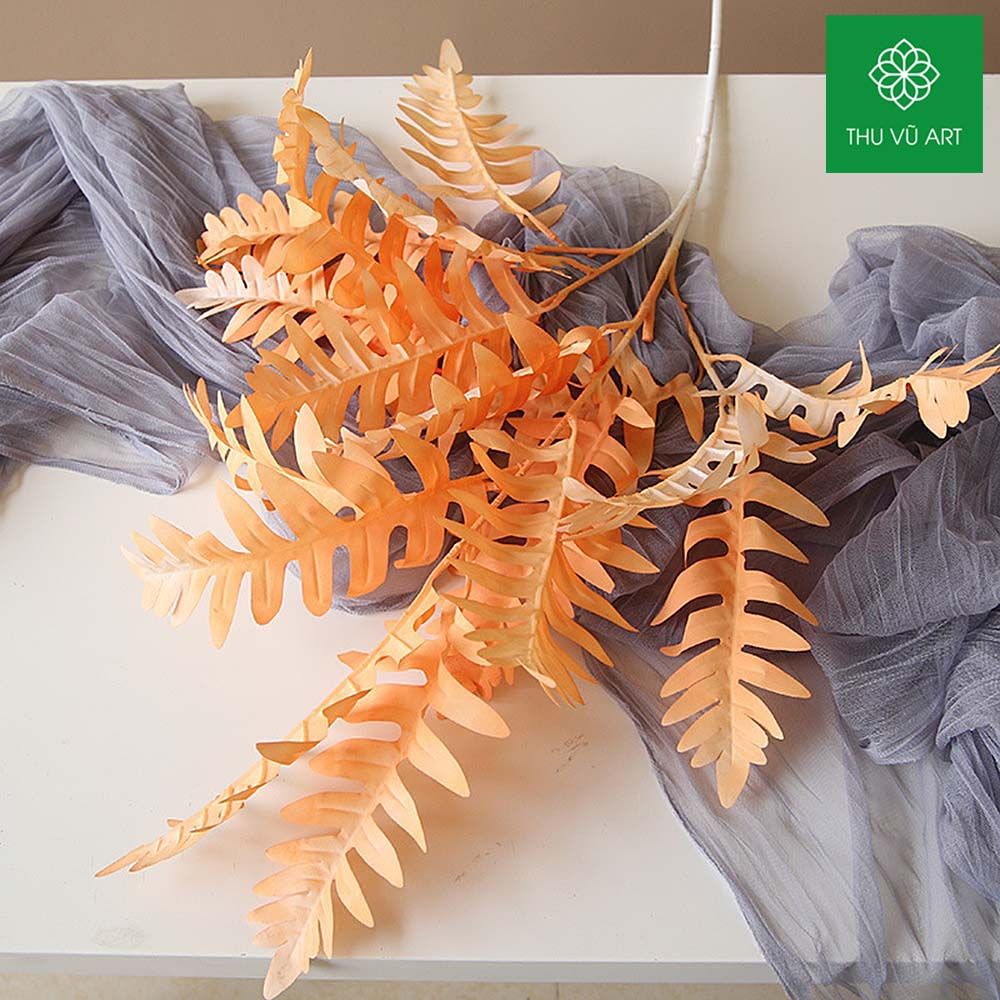 Dương xỉ pháp 3 nhánh