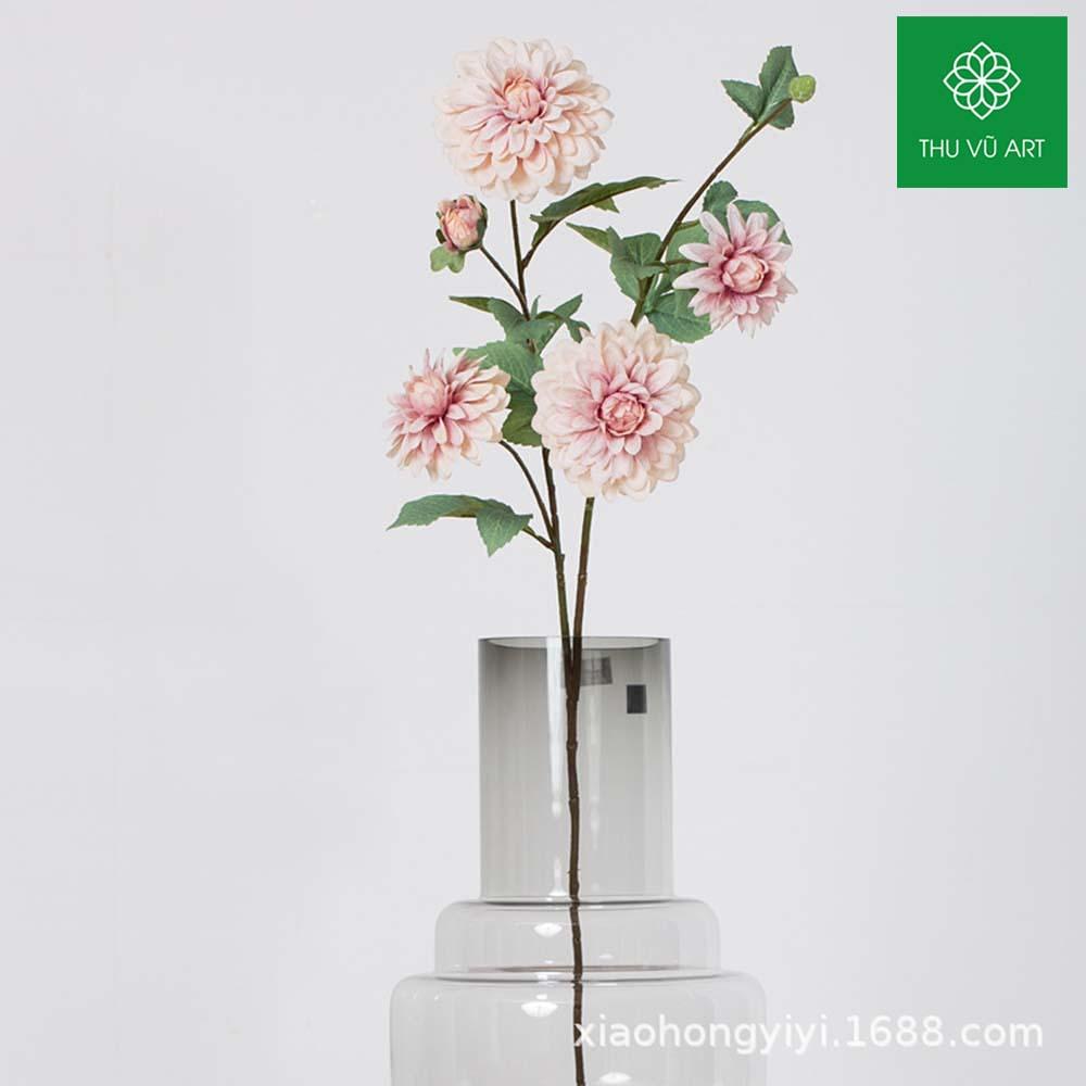 Cúc hàn 5 bông 1 nụ