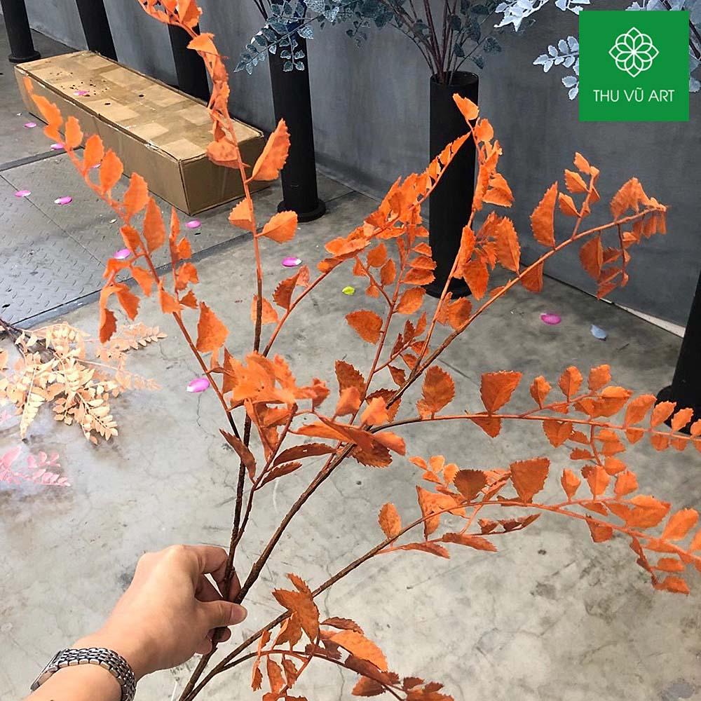 Cành sâm 3 nhánh